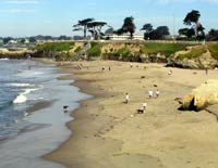 West Cliff Drive, Santa Cruz, California